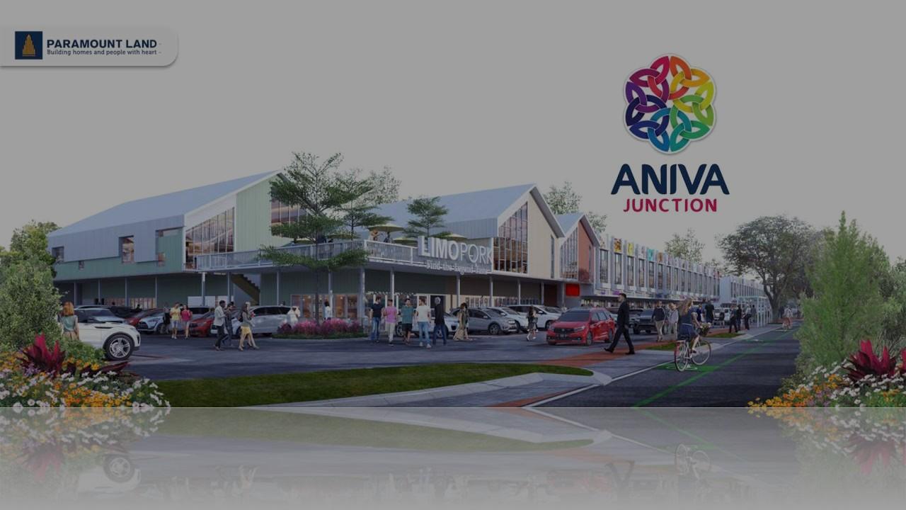 Ruko-Aniva-Junction-banner